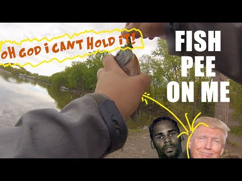 Fish Pee On Me