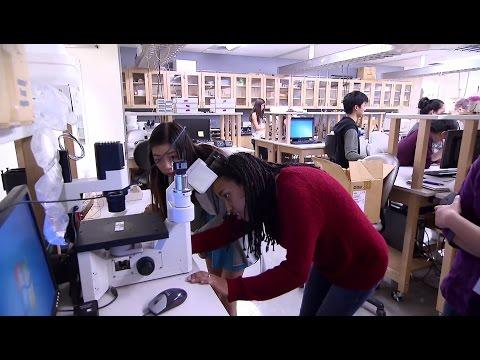 Explore UW Engineering - Bioengineering
