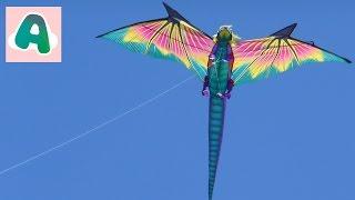 Запускаем воздушного дракона (змея) Run the air dragon (snake)