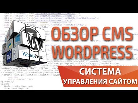 Обзор преимуществ и недостатков CMS Wordpress 2017 — Максим Набиуллин