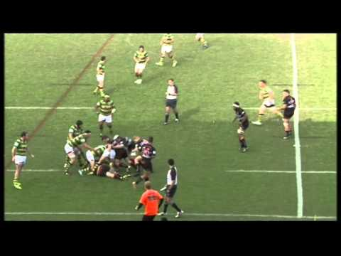 Pat Curtin Rugby Highlights