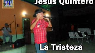 Jesus Quintero. El Tigre De Matanegra - La Tristeza De Un Guayabo
