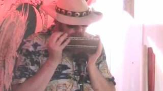 Nick on bass harmonica with Starry Crown Dub Sound System