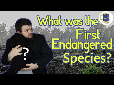 What Was The First Endangered Species?