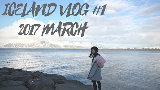 跟著我去冰島吧1! 2017 MAR ICELAND VLOG#1