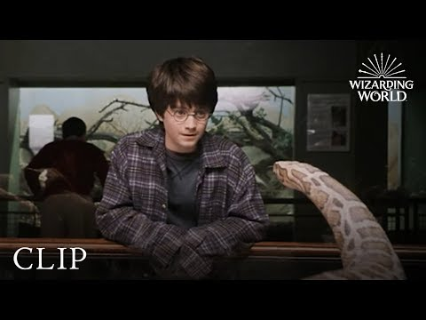 Harry and the Snake   Harry Potter and the Philosopher's Stone