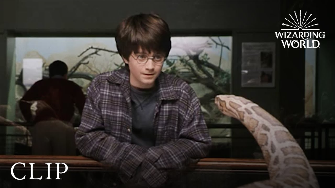 Download Harry and the Snake | Harry Potter and the Philosopher's Stone
