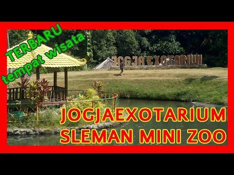 mini-zoo-sleman-(jogja-exotarium)---kebun-binatang-mini-yang-ada-di-sleman,-yogyakarta.