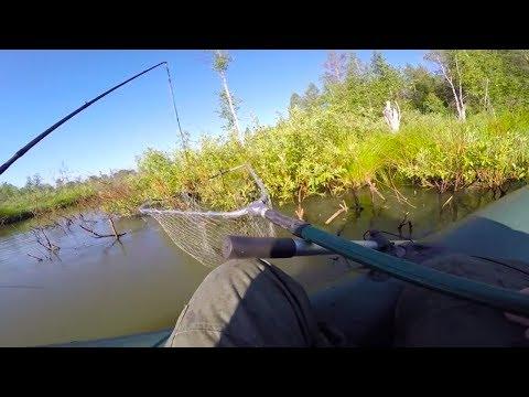Злая щука сломала спиннинг | Рыбалка на малой речке