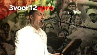 Mini Mansions - Vertigo Live bij 3voor12 Radio