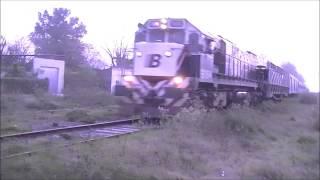 Nuevos Ferrocarriles Argentinos. Trenes Generales, Diferenciales. y Liviana.