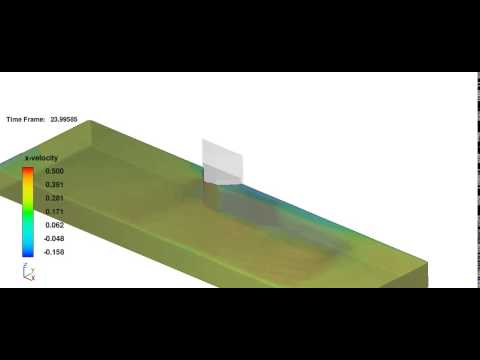 Flow 3D CFD Simulation (abutment)