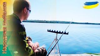 Рыбалка на фидер в Александровке 29 июня