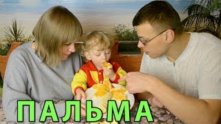 БЛЮДА ДЛЯ ДЕТЕЙ! Что приготовить ребенку? Украшение блюд из фруктов (детское блюдо) - ПАЛЬМА!