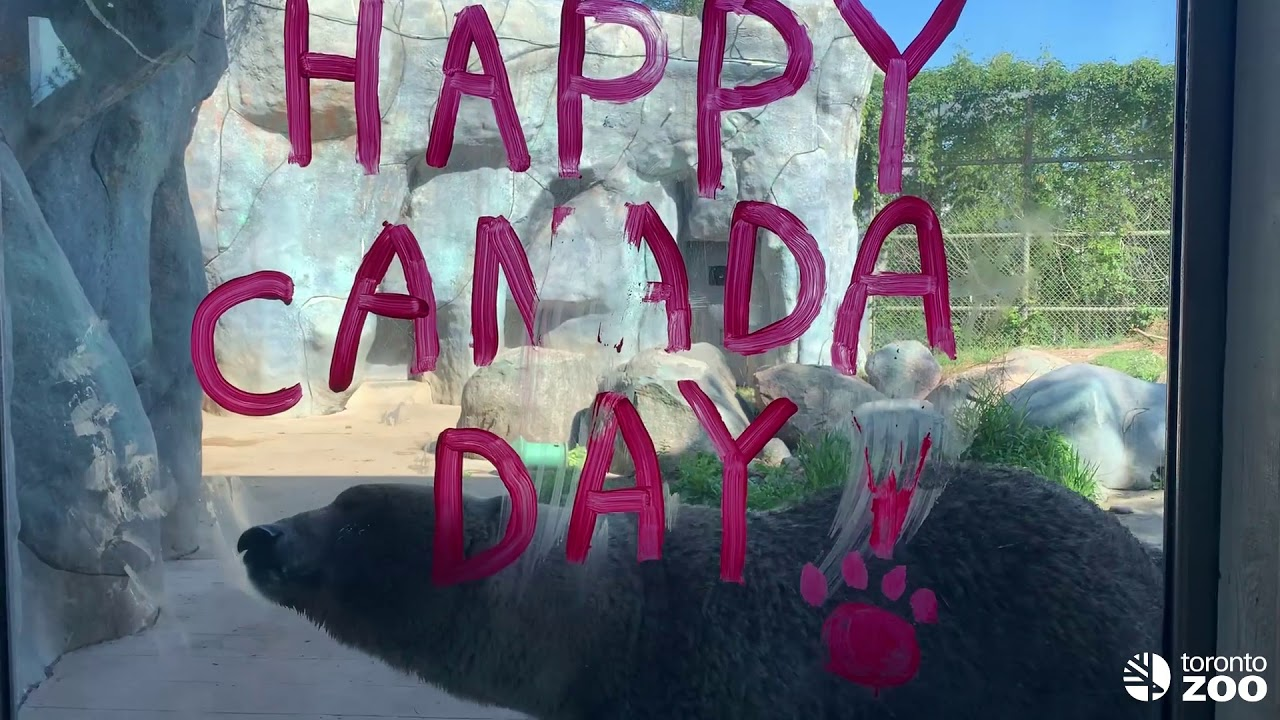 Toronto Zoo Animals Celebrate Canada Day