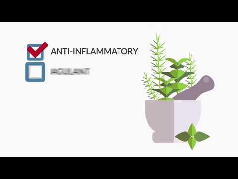 Herbal Medicine - Charlotte, NC