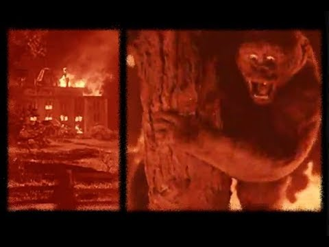 """Download The Burning Orphanage Scene From """"MIGHTY JOE YOUNG"""" (1949)"""
