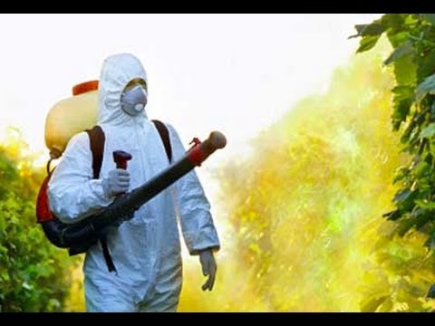 The Unintended Consequences of Pesticides