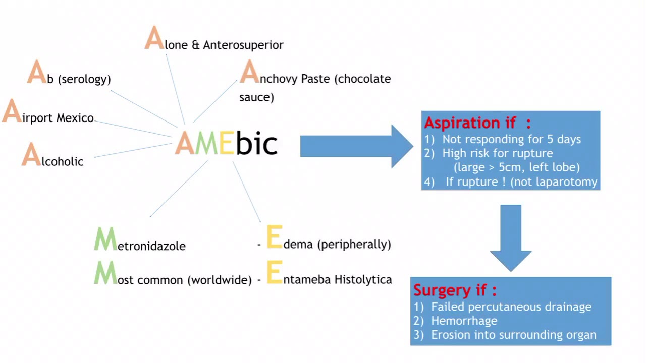 small resolution of amebic pyogenic liver abscess