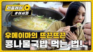 [어서와 한국은 처음이지 64화] ※든든한 건강 보양식※ 우메이마표 콩나물국밥 먹는 법