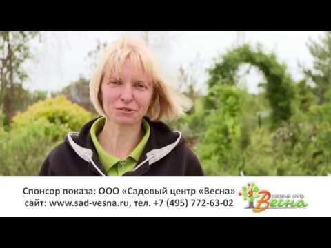 Питомник и садовый центр Весна в Московской области. Размножение растений.