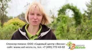Питомник и садовый центр Весна в Московской области. Размножение растений.(, 2015-10-16T18:49:36.000Z)