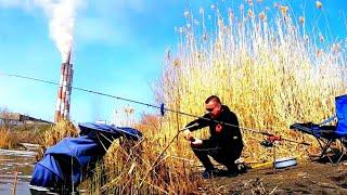Рыбалка на Карася в Апреле на Фидер Хитрый Карась Рыбалка 2021