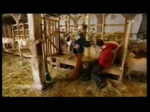 Der Traum vom eigenen Land  Jungbauern suchen Hof