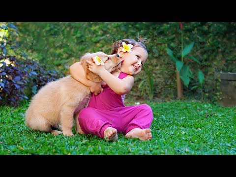 Puppies and Babies Playing Together Compilation
