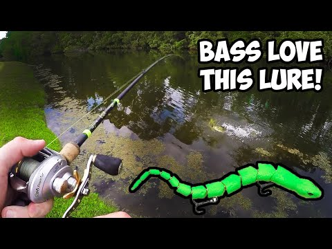 Do Bass Actually Eat SNAKES?? | Topwater SNAKE Bass Fishing Lure!