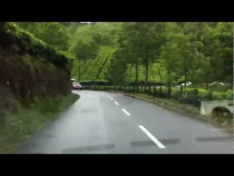 Drive from Cochin to Munnar