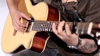 Demo Guitar A-103c