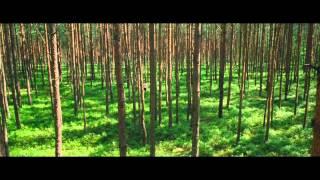 Трейлер  «Я вижу, я вижу    Ich seh, Ich seh» 2014