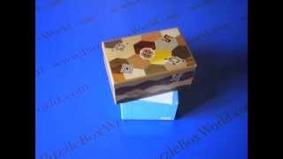 The 5 Sun 10 Step Zougan Ran Japanese Puzzle Box
