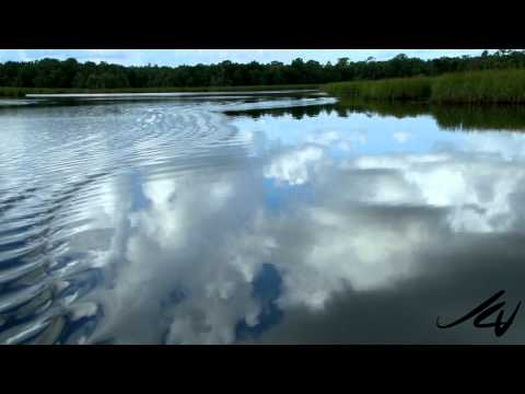 Crystal River Florida [HD]