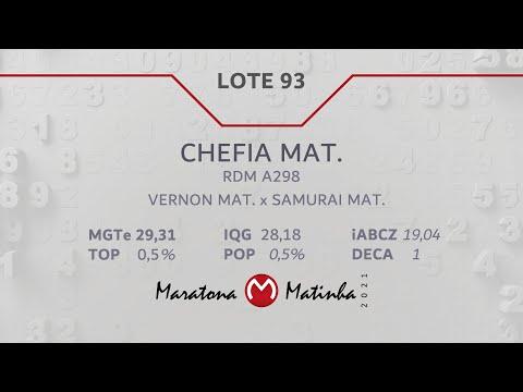 LOTE 93 Maratona Matinha