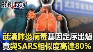 全台大警戒!武漢肺炎病毒基因定序出爐 竟與SARS「相似度高達80%」!【關鍵時刻】20200113-3 劉寶傑 黃世聰