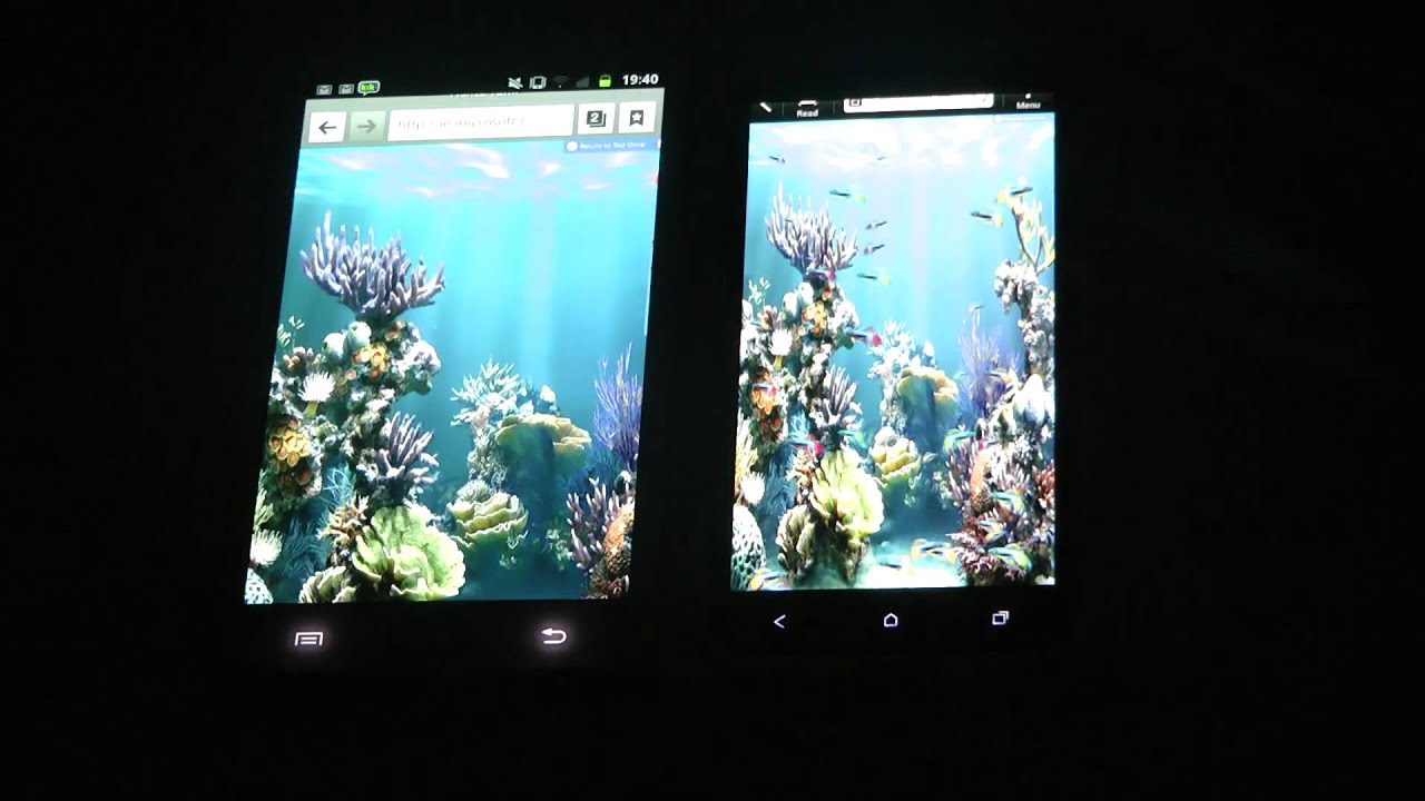 Htc one x vs samsung galaxy note ie fish tank test youtube for Fish tank full movie