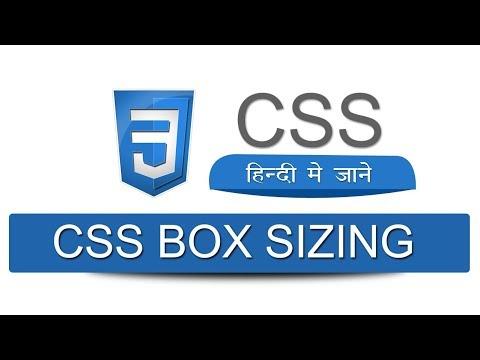 CSS Box Sizing | Border Box | Tutorial in Hindi | #cssboxsizingborderbox #theaspdeveloper thumbnail