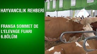 Hayvancılık Rehberi Fransa Sommet De L 39 elevage Fuarı 6 Bölüm