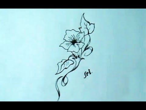 How to draw a very simple lily flower yzarts yzarts for How to draw a really good flower