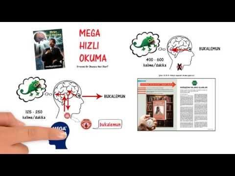 Anlayarak Hızlı Okuma Teknikleri