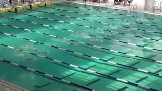 2014-15新界區小學界游泳比賽男丙50自由式決賽