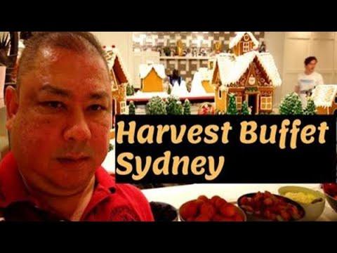 All You Can Eat | Harvest Buffet | Buffet SYDNEY | Cheap Eats Sydney