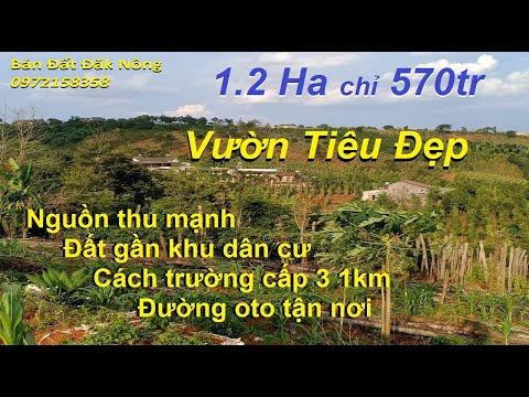 Khám phá du lịch Đắk Lắk (Discover Tourism Ho Lak Dak Lak) from YouTube · Duration:  9 minutes 14 seconds