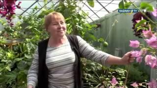 Жизнь под землей: Людмила Земляная. Живи на 100!