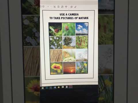 Funschooling - Nature Study & Outdoor Science Journal - The Thinking Tree