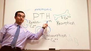 Parathyroid Hormone (PTH) mnemonic