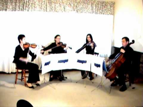 Allegro string quartet. The best live music for weddings in Durban
