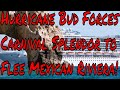 Live Cruise Ship News: Hurricane Bud Forces Carnival Splendor to Flee Mexican Riviera